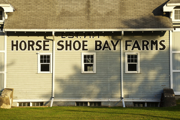 The Horseshoe Bay Barns, which you'll pass near mile 28. These barns were once home to Wisconsin's largest farm and Door County's largest employer. Photo by Len Villano.